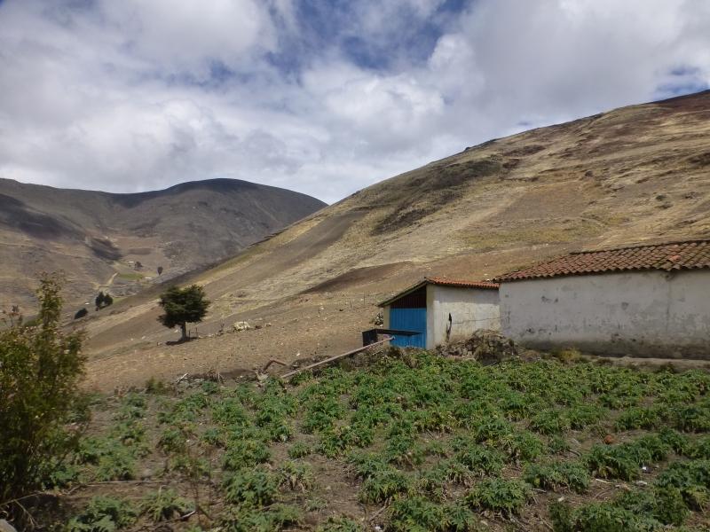 Mucuchies - Terrenos y Parcelas