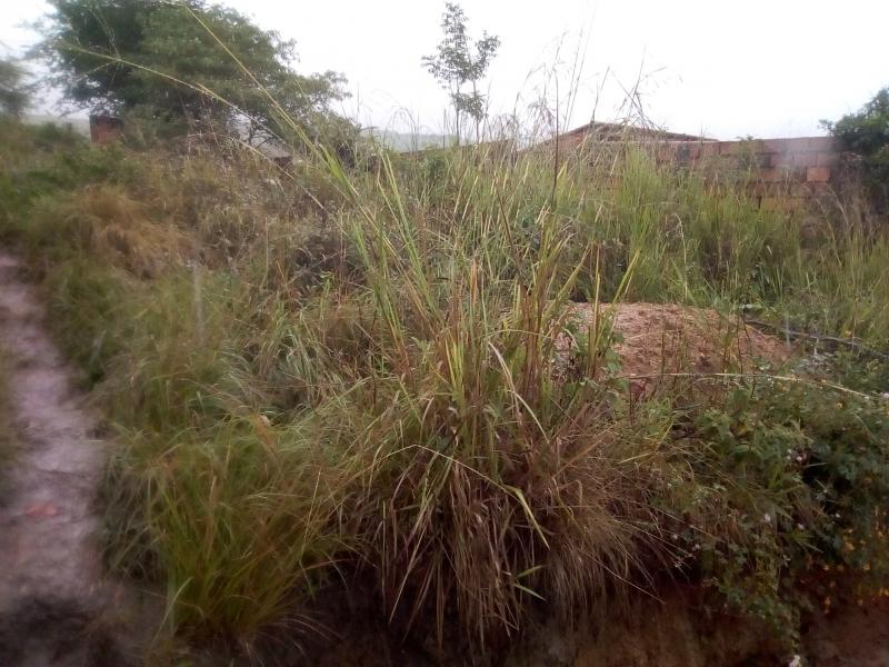 Boca de Caneyes - Terrenos y Parcelas