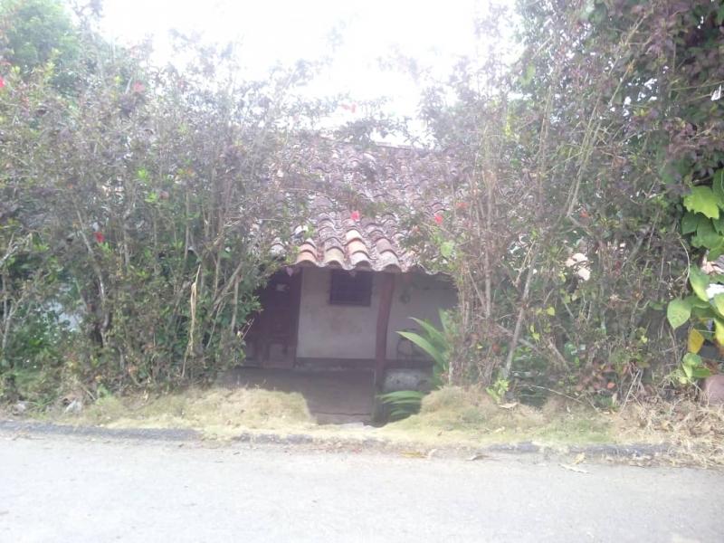 Municipio Guasimos - Terrenos y Parcelas