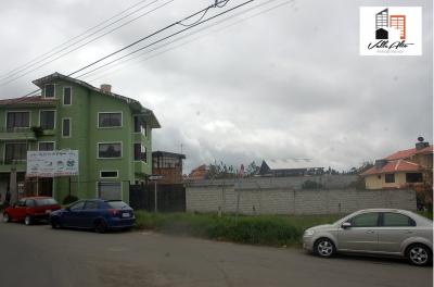 TERRENO ESQUINERO COMERCIAL EN RICAURTE
