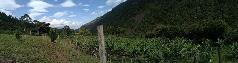Seboruco - Haciendas y Fincas