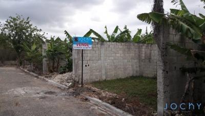 Jochy Real Estate Vende Solar