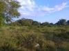 Cabudare - Terrenos y Parcelas