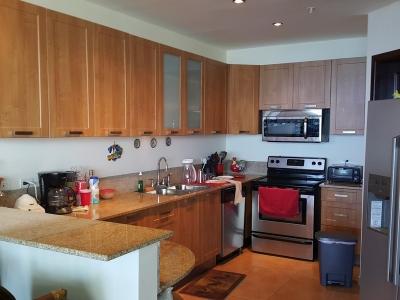 Se Vende Apartamento Grande en Coronado