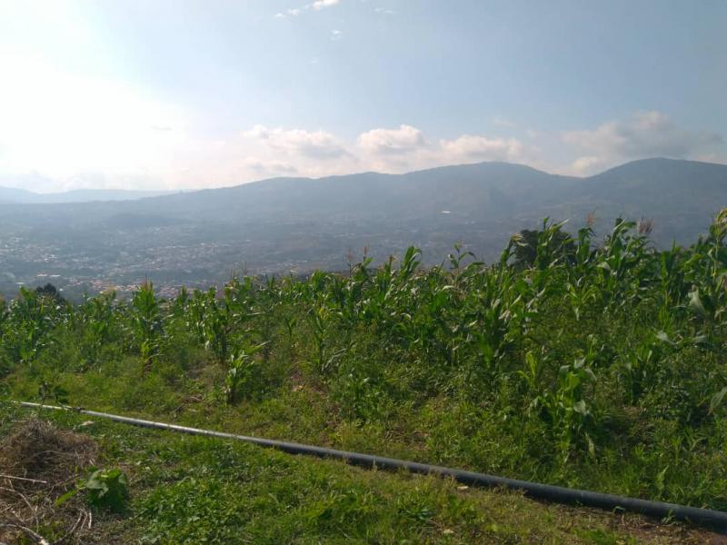Capachito - Terrenos y Parcelas