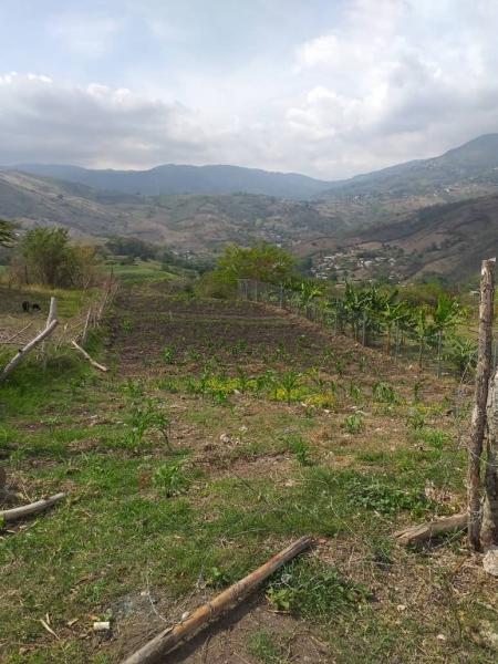La Laja - Terrenos y Parcelas