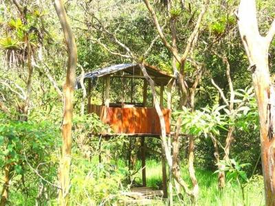 Terreno en Venta en MINDO, 3 hectáreas