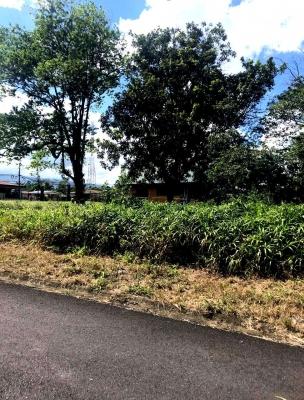 CityMax Vende Lote para Construír, a 1 minuto del centro de Guápiles