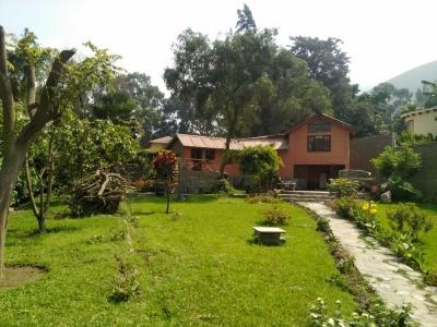 SANTA EULALIA: terreno con casita de campo