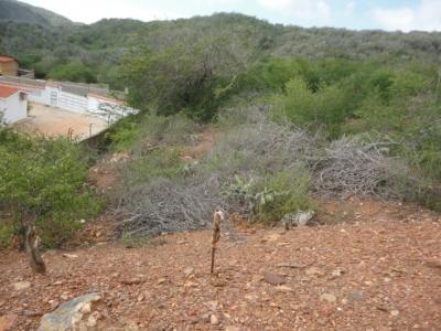 Se Vende Terreno Sector La Asunción.