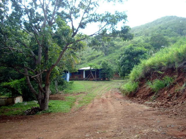Paraguachi - Terrenos y Parcelas