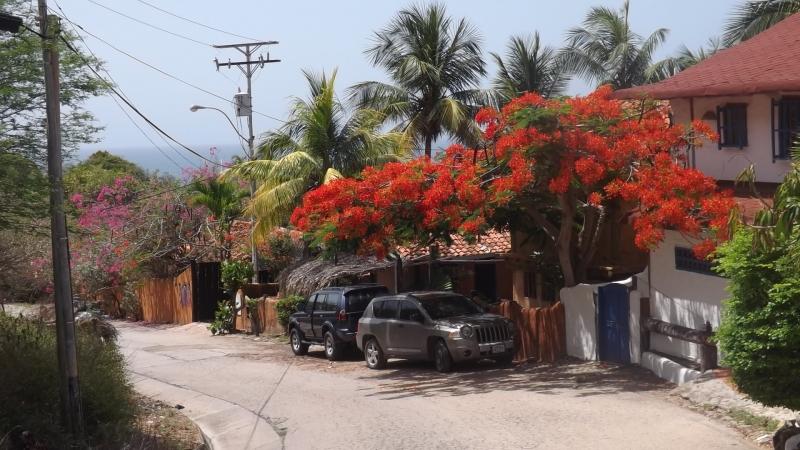 Guacuco - Terrenos y Parcelas