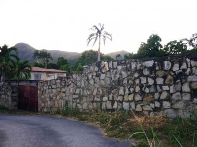 TERRENO EN VENTA EN ZONA PRIVILEGIADA EL LIMON