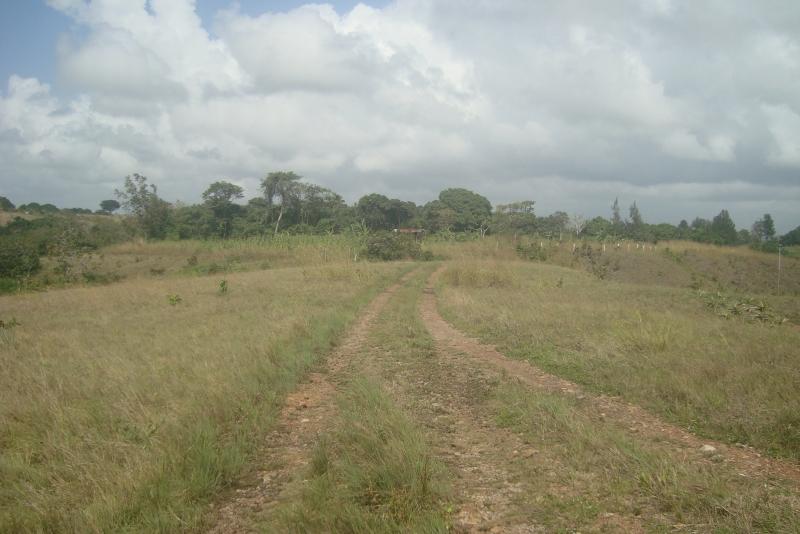 Chaguaramal - Terrenos y Parcelas