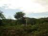 Los Robles - Terrenos y Parcelas