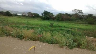 Terreno Agroindustrial Santa Cruz de Aragua cod 17-5521