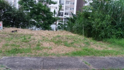 Terreno cerca de la UIP #17-3761**GG**