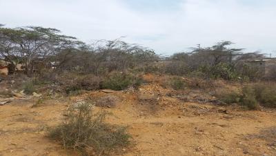 Terreno en el Municipio Los Taques