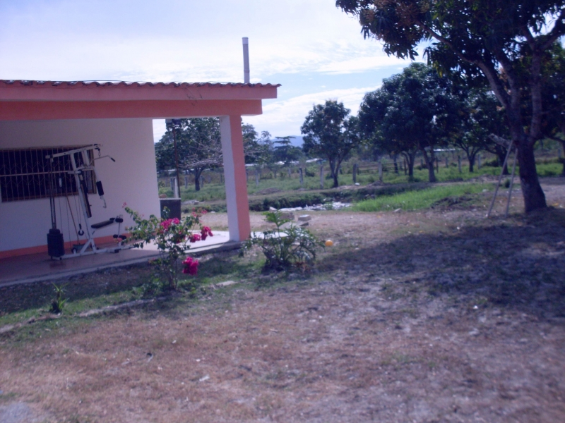- Haciendas y Fincas