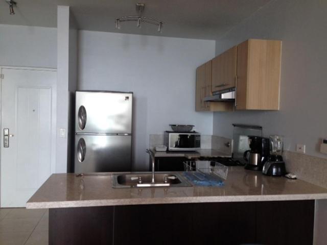 Acogedor Apartamento en Avenida Balboa  vl  17-1996  (667.63711)