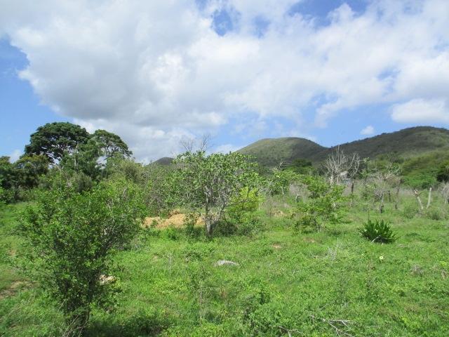 La Vecindad - Terrenos y Parcelas