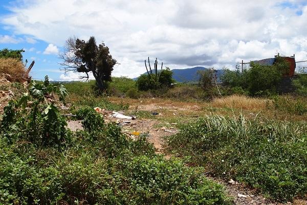 Agua de Vaca - Terrenos y Parcelas