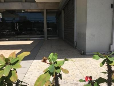 Local comercial de 165mts2, Piantini