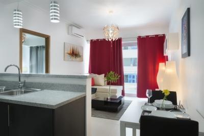Apartamento en Alquiler Amueblado de Una Habitación