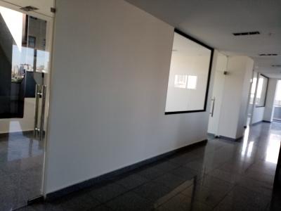Oficina en Alquiler en Piantini de 245 m2 y 45 m2 de Terraza