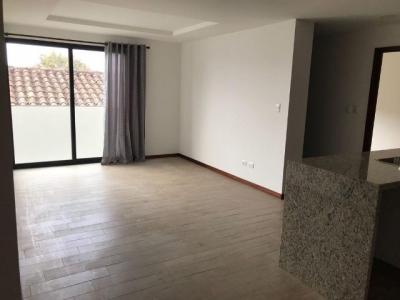 Apartamento en renta zona 15,vh1