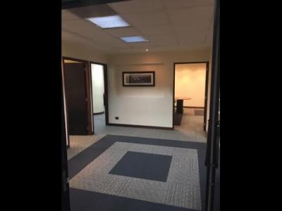 Oficina en Alquiler zona 10 Céntrica Plaza