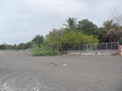 Palmar de Ocoa -30 mts2 lineales de playa con título deslindado