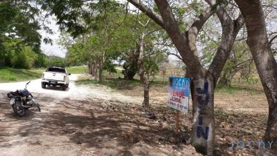 Jochy Real Estate Vende 62 tareas en Chavón, Municipio de Guaymate