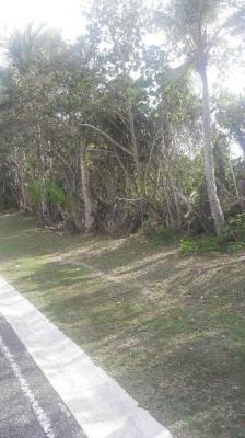 Terreno residencial 1397m2, Punta Cana