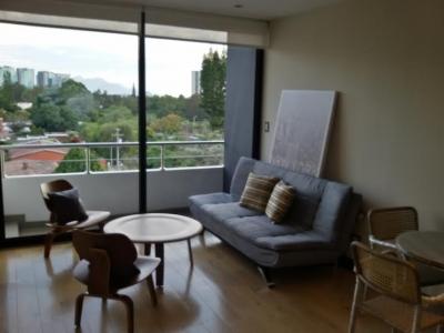Apartamento en Renta en Zona 15, amueblado