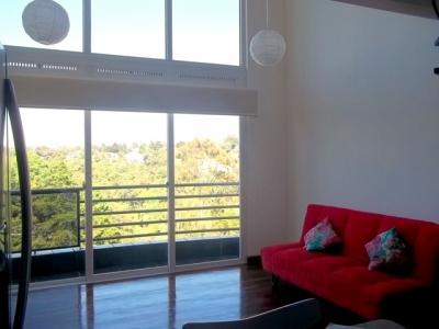 Apartamento tipo loft de 1 Habitación en renta en zona 16