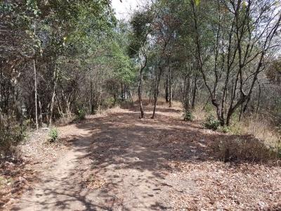 Terreno en venta, Foresta Cayala zona 16