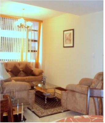 Apartamento amueblado y equipado en renta zona 10