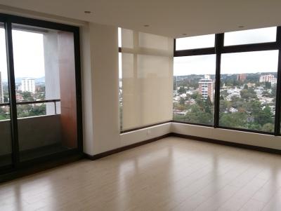 Alquilo apartamento / apartamento en alquiler zona 10