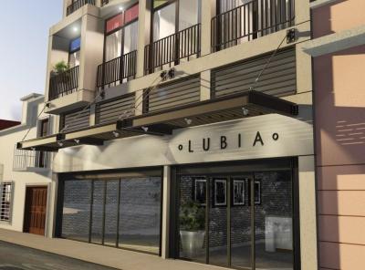 Apartamento en venta Edificio Lubia zona 1