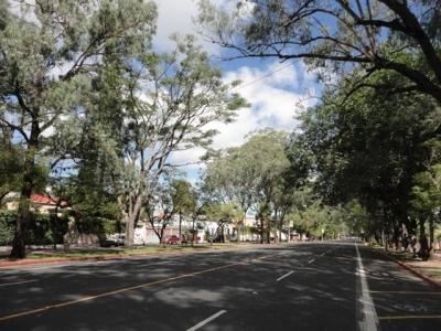 Terreno de 5000 v2 con casa en la Avenida Simeon Cañas