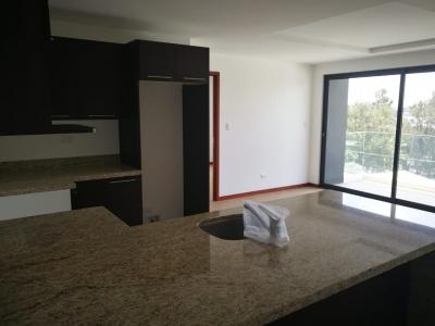 Apartamento de 1 habitación en alquiler Z. 15