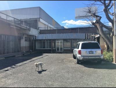 Edificio para Renta, Bodega – Oficinas,  Roosevelt Zona 11