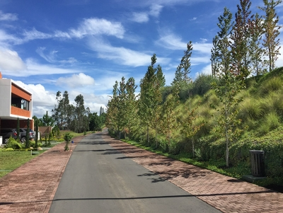 Exclusivo Terreno de Esquina en Acacias de Cayalá zona 16 / SAOX Real Estate