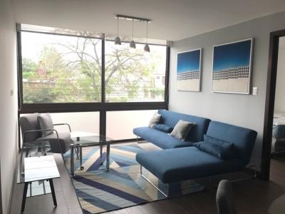 Rento Apartamento Amueblado en zona 15