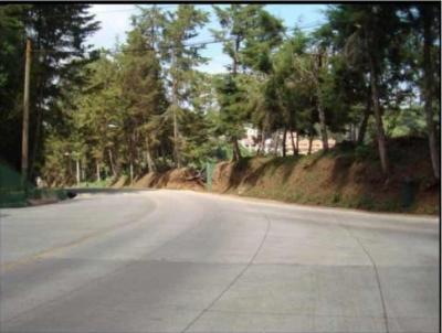 Terreno Dentro de Garita en Santa Rosalía km 12.5 CES.