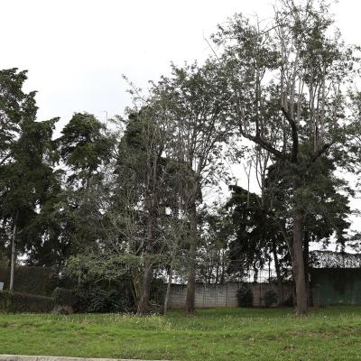 Terreno club de golf San Isidro