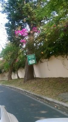 Terreno en San Rafael II frente a Hotel Hilton Guatemala