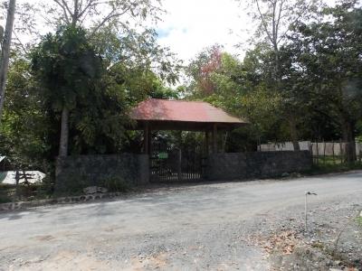 Terreno - Venta MATA DE PLÁTANO, JARABACOA / RD$6,414,900°° / 3,289.57m2