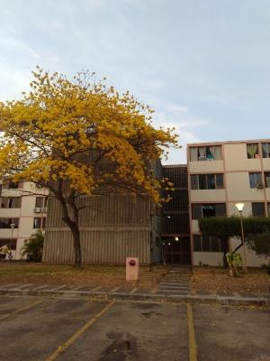 Venta de apartamento San Diego, Monteserino